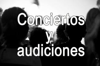CONCIERTOS Y AUDICIONES
